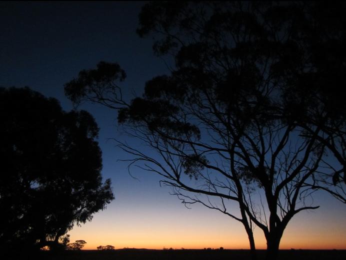 Screen Shot 2013-02-03 at 4.50.48 PM