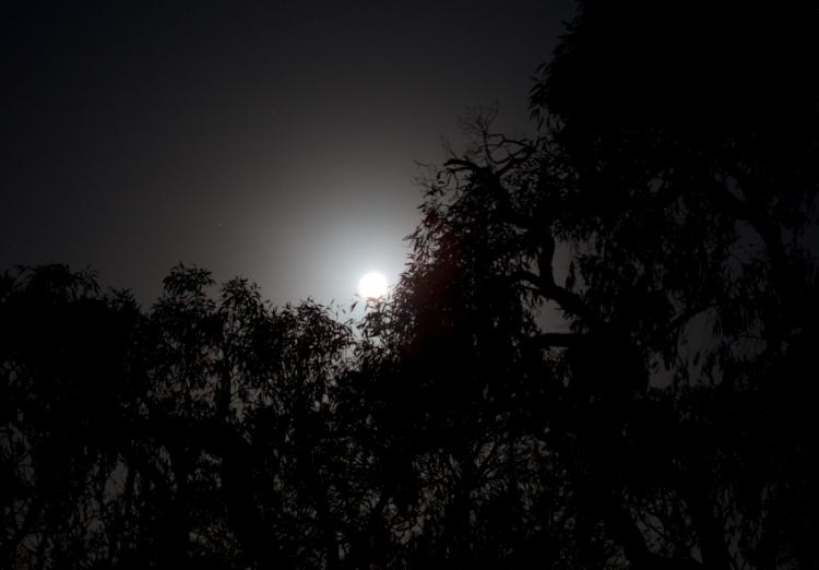 Screen Shot 2014-12-08 at 6.58.32 AM