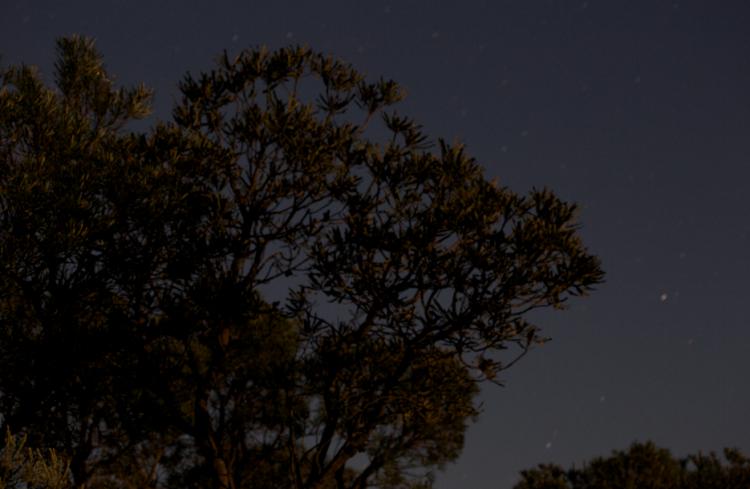 Screen Shot 2014-12-08 at 6.59.28 AM