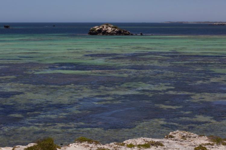 Greenhead Western Australia Indian Ocean Reef